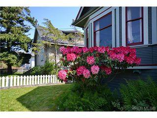 Photo 19: 623 Manchester Rd in VICTORIA: Vi Burnside House for sale (Victoria)  : MLS®# 629973