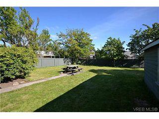 Photo 17: 623 Manchester Rd in VICTORIA: Vi Burnside House for sale (Victoria)  : MLS®# 629973