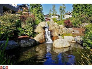 "Photo 9: 102 4001 OLD CLAYBURN Road in Abbotsford: Abbotsford East Townhouse for sale in ""CEDAR SPRINGS"" : MLS®# F1306251"