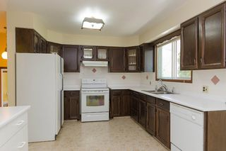 Photo 11: 16034 Hwy. 206 in RM Springfield: Single Family Detached for sale : MLS®# 1511973