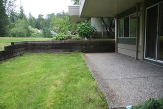 Photo 36: 113 4001 Old Clayburn Road in Abbotsford: Townhouse for sale : MLS®# R2280148