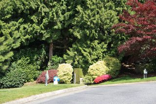 Photo 62: 113 4001 Old Clayburn Road in Abbotsford: Townhouse for sale : MLS®# R2280148