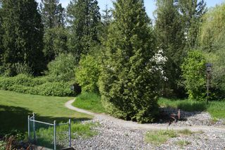 Photo 61: 113 4001 Old Clayburn Road in Abbotsford: Townhouse for sale : MLS®# R2280148