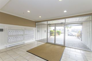 Photo 14: 202 22363 SELKIRK AVENUE in Maple Ridge: West Central Condo for sale : MLS®# R2195203