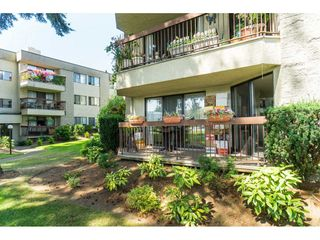 "Photo 19: 135 31955 OLD YALE Road in Abbotsford: Abbotsford West Condo for sale in ""EVERGREEN VILLAGE"" : MLS®# R2396453"