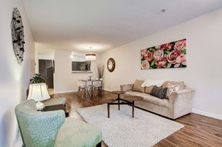 Photo 3: 308 11605 227 Street in Maple Ridge: East Central Condo for sale : MLS®# R2406154