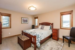 Photo 24: 273008 B TWP RD 480: Rural Wetaskiwin County House for sale : MLS®# E4185860