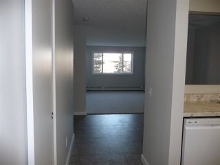 Photo 3: 404 14808 26 Street NW in Edmonton: Zone 35 Condo for sale : MLS®# E4185956
