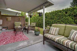 """Photo 23: 12 12049 217 Street in Maple Ridge: West Central Townhouse for sale in """"BOARDWALK"""" : MLS®# R2484735"""
