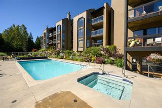 """Photo 22: 203 3217 BLUEBERRY Drive in Whistler: Blueberry Hill Condo for sale in """"IRONWOOD/BLUEBERRY"""" : MLS®# R2500073"""