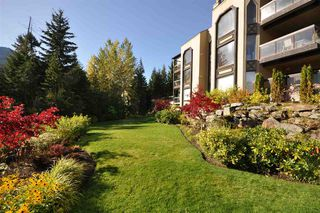 """Photo 23: 203 3217 BLUEBERRY Drive in Whistler: Blueberry Hill Condo for sale in """"IRONWOOD/BLUEBERRY"""" : MLS®# R2500073"""