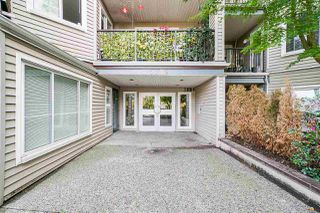 """Photo 3: 411 5759 GLOVER Road in Langley: Langley City Condo for sale in """"College Court"""" : MLS®# R2508133"""