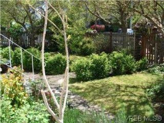 Photo 9: 1590 Bay St in VICTORIA: Vi Oaklands House for sale (Victoria)  : MLS®# 504668