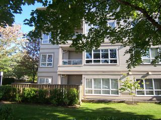 "Photo 2: 207 4950 MCGEER Street in Vancouver: Collingwood VE Condo for sale in ""Carleton"" (Vancouver East)  : MLS®# V974793"