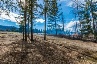 Photo 43: 4902 Parker Road in Eagle Bay: Vacant Land for sale : MLS®# 10132680