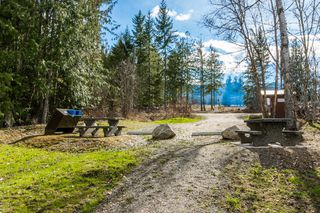 Photo 19: 4902 Parker Road in Eagle Bay: Vacant Land for sale : MLS®# 10132680