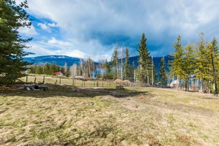 Photo 33: 4902 Parker Road in Eagle Bay: Vacant Land for sale : MLS®# 10132680