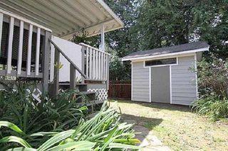Photo 20: 20208 116B Avenue in Maple Ridge: Southwest Maple Ridge House for sale : MLS®# R2392228