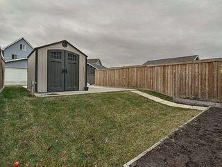 Photo 2: 7211 22 Avenue SW in Edmonton: Zone 53 House Half Duplex for sale : MLS®# E4181253