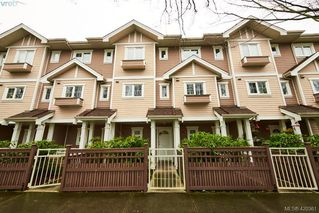Main Photo: 6 1870 Cook Street in VICTORIA: Vi Central Park Row/Townhouse for sale (Victoria)  : MLS®# 420361