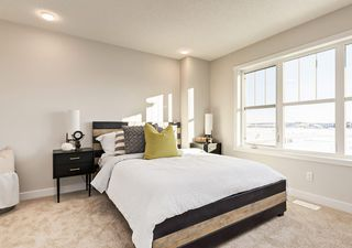 Photo 14: 6222 Hampton Gray Avenue NW in Edmonton: Zone 27 House for sale : MLS®# E4197716
