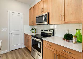 Photo 10: 6222 Hampton Gray Avenue NW in Edmonton: Zone 27 House for sale : MLS®# E4197716