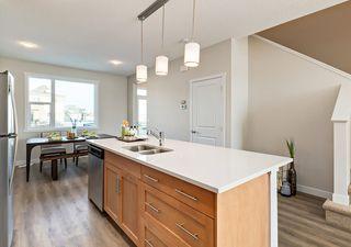 Photo 9: 6222 Hampton Gray Avenue NW in Edmonton: Zone 27 House for sale : MLS®# E4197716
