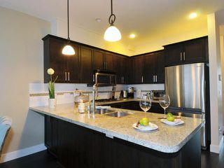 Photo 7: # 52 22865 TELOSKY AV in Maple Ridge: East Central Condo for sale : MLS®# V1013638