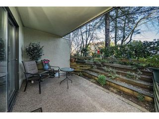 Photo 19: 109 1210 PACIFIC STREET in Coquitlam: North Coquitlam Condo for sale : MLS®# R2326349