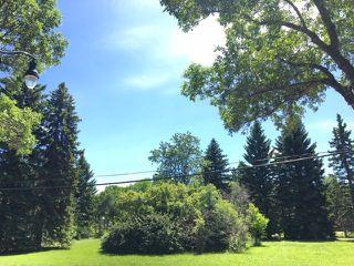 Photo 7: 14316 99 avenue Avenue in Edmonton: Zone 10 House for sale : MLS®# E4202481
