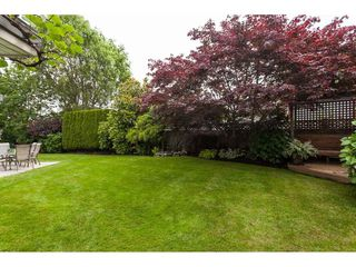"Photo 23: 21773 46A Avenue in Langley: Murrayville House for sale in ""Murrayville"" : MLS®# R2475820"