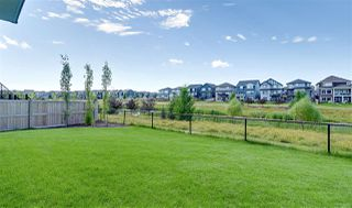 Photo 49: 5330 21A Avenue in Edmonton: Zone 53 House for sale : MLS®# E4207454