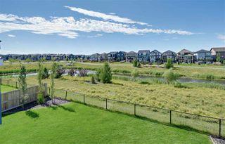 Photo 46: 5330 21A Avenue in Edmonton: Zone 53 House for sale : MLS®# E4207454