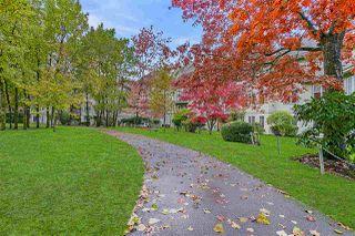 """Photo 34: 206 12125 75A Avenue in Surrey: West Newton Condo for sale in """"Strawberry Hill Estates"""" : MLS®# R2517425"""