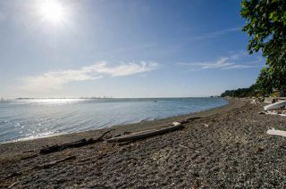 Photo 36: 310 TSAWWASSEN BEACH Road in Delta: English Bluff Land for sale (Tsawwassen)  : MLS®# R2524820