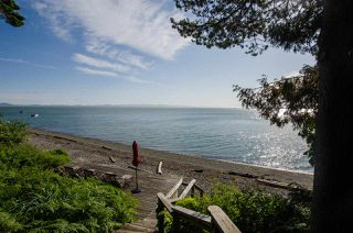Photo 32: 310 TSAWWASSEN BEACH Road in Delta: English Bluff Land for sale (Tsawwassen)  : MLS®# R2524820