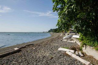Photo 2: 310 TSAWWASSEN BEACH Road in Delta: English Bluff Land for sale (Tsawwassen)  : MLS®# R2524820