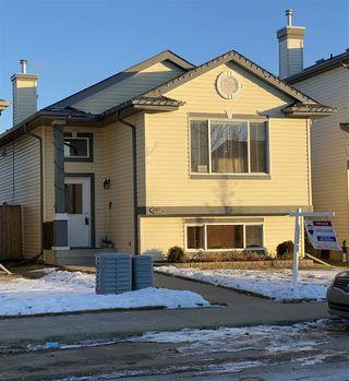 Photo 19: 359 Brintnell Boulevard in Edmonton: Zone 03 House for sale : MLS®# E4223833