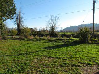 Photo 10: 41333 Nicomen Island Trunk Road Road in Deroche: Dewdney Deroche House for lease (Mission)