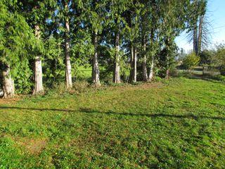 Photo 11: 41333 Nicomen Island Trunk Road Road in Deroche: Dewdney Deroche House for lease (Mission)