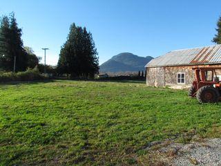 Photo 12: 41333 Nicomen Island Trunk Road Road in Deroche: Dewdney Deroche House for lease (Mission)