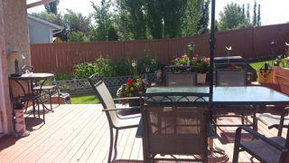 Photo 26: 81 Ozerna Road NW: Edmonton House for sale : MLS®# E4028912