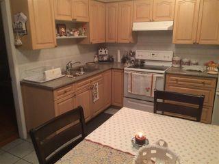 Photo 8: 1057 WINDERMERE STREET in Vancouver: Renfrew VE House for sale (Vancouver East)  : MLS®# R2128134