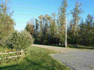 Photo 23: 49111 Range Road 73: Rural Brazeau County House for sale : MLS®# E4173001