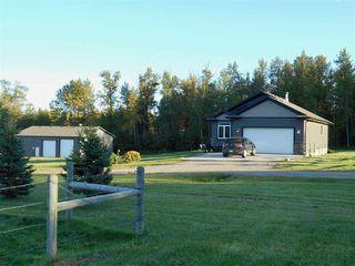 Photo 21: 49111 Range Road 73: Rural Brazeau County House for sale : MLS®# E4173001
