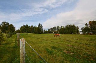 Photo 24: 49111 Range Road 73: Rural Brazeau County House for sale : MLS®# E4173001