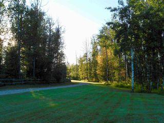 Photo 28: 49111 Range Road 73: Rural Brazeau County House for sale : MLS®# E4173001