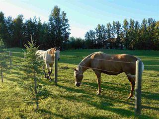 Photo 25: 49111 Range Road 73: Rural Brazeau County House for sale : MLS®# E4173001