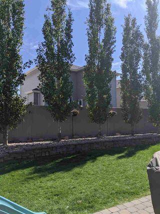 Photo 43: 315 Bridgeport Place N: Leduc House for sale : MLS®# E4196300