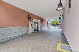 Photo 30: 212 1642 Mckenzie Ave in Saanich: SE Lambrick Park Condo for sale (Saanich East)  : MLS®# 844016